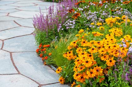 Opening garden
